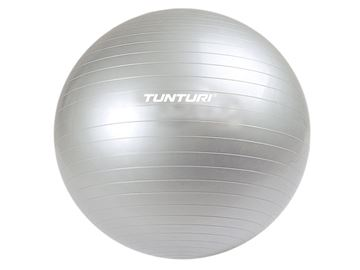 Picture of Fitness Tunturi Gym Ball Aerobica 2014